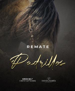 Remate Padrillos